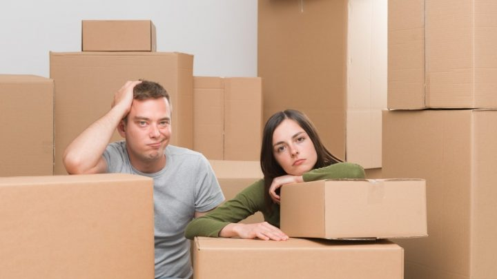 Hire the Professional Movers